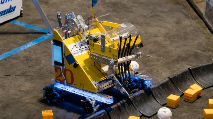 3D-моделирование и робоквесты. Фоторепортаж с Дней робототехники в Пермском крае