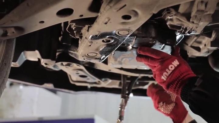 При покупке моторного масла Motul от 4 литров в «Феникс-Авто» — замена бесплатно
