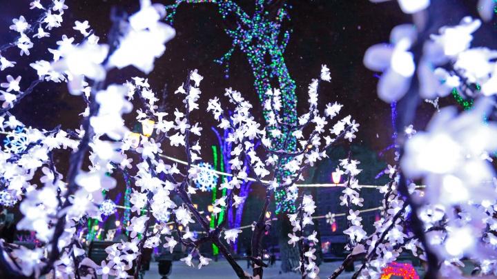 Утренники, спектакли, выставки и концерты: куда пойти в Уфе 2 января