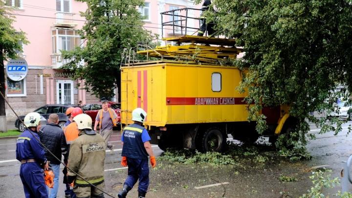 По Перми прошел мощный ураган: рассказываем, куда звонить, чтобы власти убрали поваленные деревья