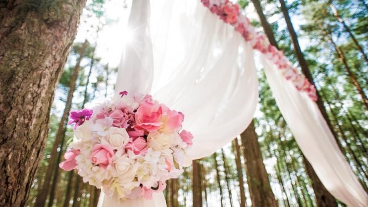 Свадьбы в Уфе: почему закрыт Дворец бракосочетаний и как пожениться в театре