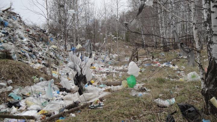 Десятиметровая гора из мусора: жители курортного поселка Башкирии требуют ликвидировать свалку
