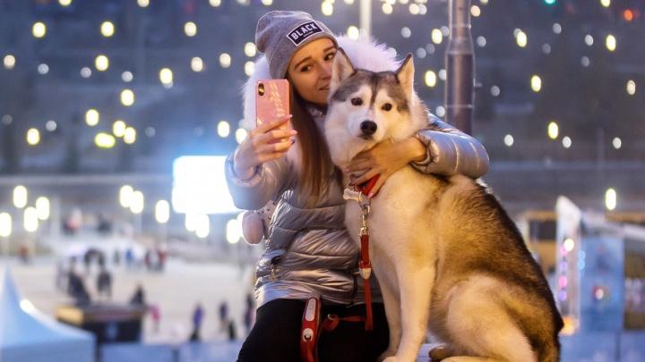 Дискотеки, салют и Путин у главной ёлки: самая полная программа новогодних праздников в Волгограде по дням