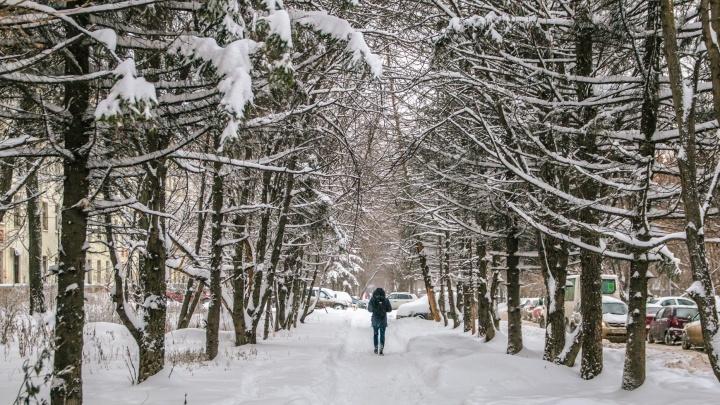 В Самарской области опять ожидают снегопады