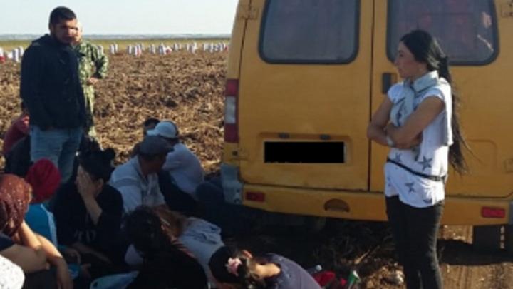 Под Волгоградом силовики задержали 30 иностранных сборщиков картошки