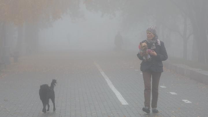 Весна придет по расписанию: посеревший Волгоград к концу недели согреется после зимних морозов