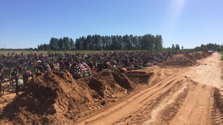 В Ярославле пустующее военное кладбище отдадут под захоронения