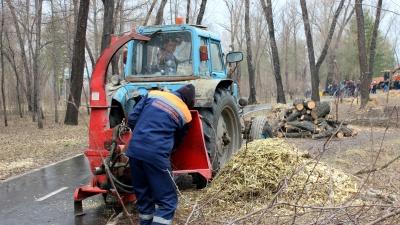 Юрист-природоохранитель Павел Журавлёв: «Компенсационное озеленение — преступная схема»