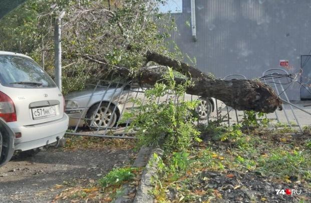 После дождичка в четверг: на Челябинскую область надвигается ураган