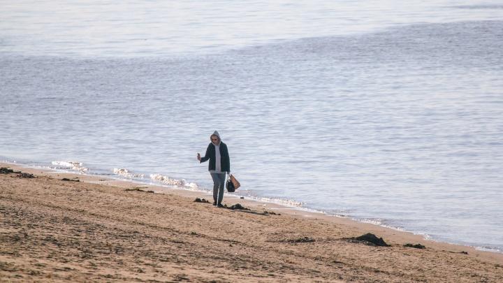 В Greenpeace рассказали, чем загрязнены берега водоемов в Самарской области