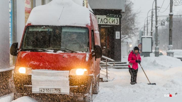 МЧС: в Прикамье ожидаются снегопады и метель