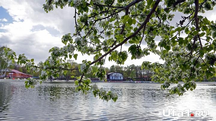 Уфимцы решают судьбу Солдатского озера в парке Якутова