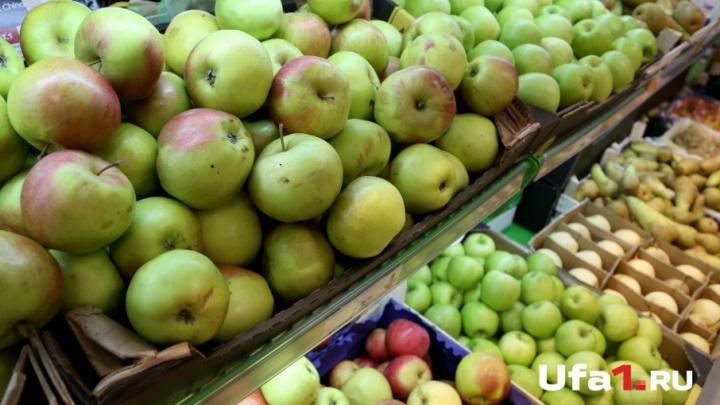 В Башкирии уничтожили запрещенные яблоки и груши