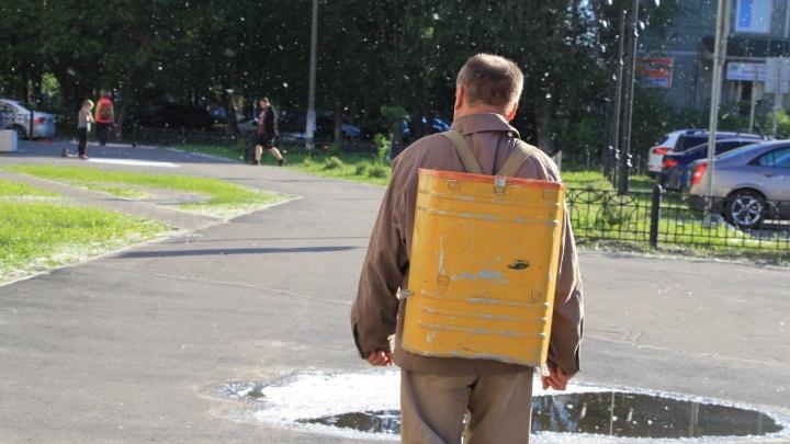 Очки, капли, побег из дома: как аллергикам пережить «тополиный беспредел» в Архангельске