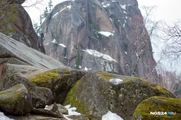Платный вход на территорию национальных парков в России ввели еще в 2015 году