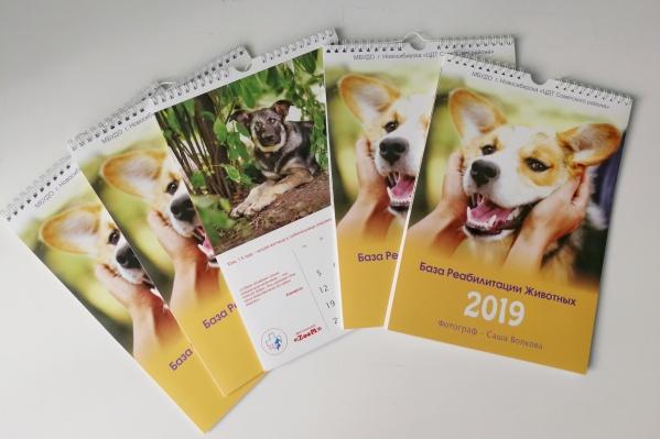 В календарь попали снимки 13 животных