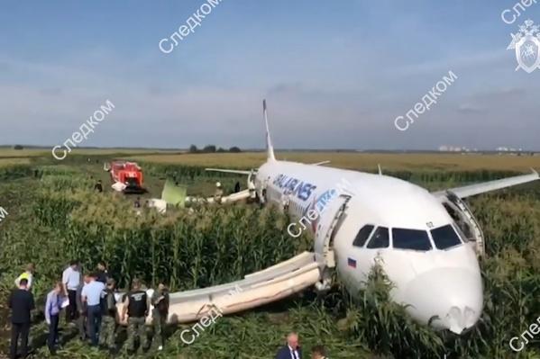 Самолёт сел прямо в поле
