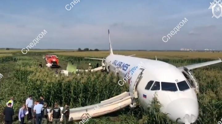 «Это было падение»: в самолёте, экстренно севшем на кукурузное поле, находилась жительница Углича