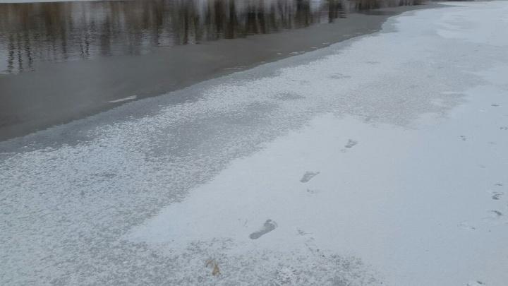 Замерз и ободрал живот: спасатели выловили из Волги занырнувшего на Тулака волгоградца