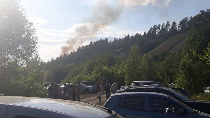 В областном МЧС назвали предварительные причины пожара рядом с фестивальной поляной Грушинского