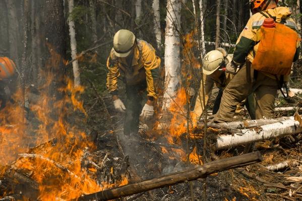 Пожарные находятся в лесу с начала июля