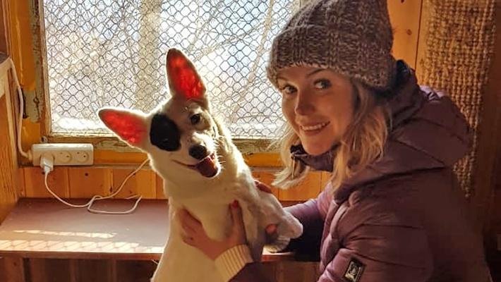«Организовала банду с котом»: двухлапая собака Моника нашла себе семью
