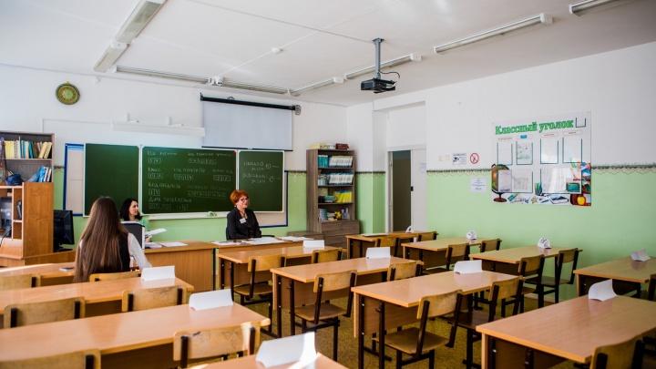 Новосибирские школьники завалили ЕГЭ по новому предмету