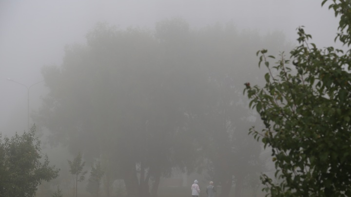 Тепло, но туманно: какая погода ждет жителей Башкирии 4 октября