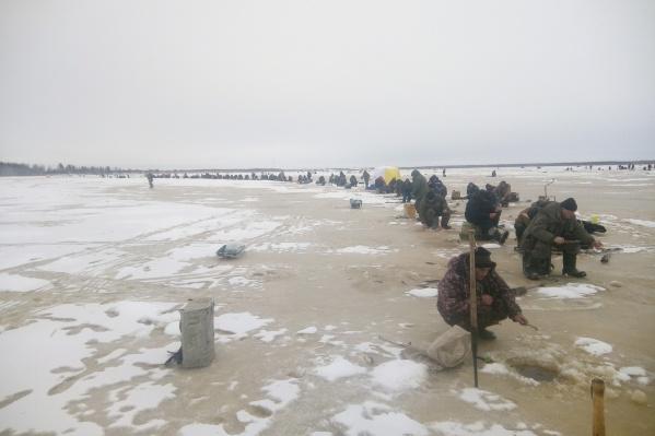 В Приморском районе рыбаки разместились на льду бок о бок — очередь уходит в горизонт, таков спрос на рыбу