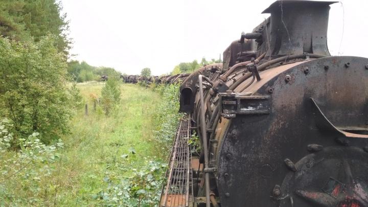 В Пермском крае начали разбирать знаменитое «кладбище паровозов»