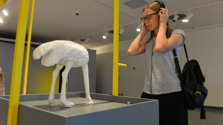 Страус без головы и старые дорожные знаки: в Ельцин-центре открыли выставку, на которой всё можно трогать