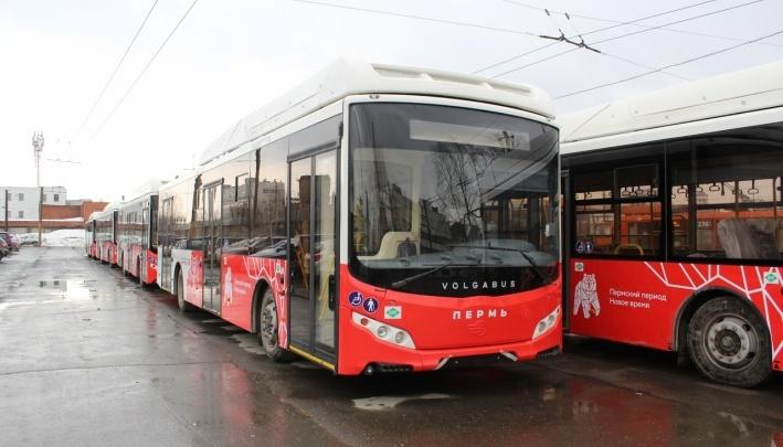С 1 мая пермские троллейбусы должны менять на «Волгабасы», но их не успевают доставить. И что будет?