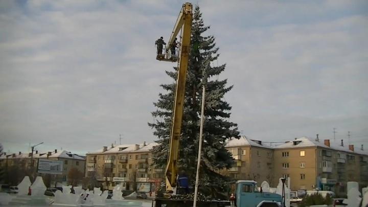 «Я даже плакала»: для ледового городка Южноуральска срубили огромную ельу детского сада
