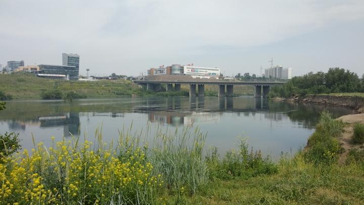 Возле Октябрьского и Путинского моста водолазы достали тела двух мужчин