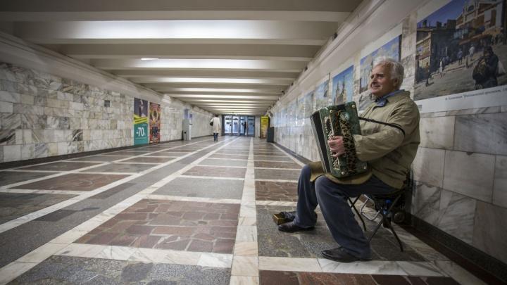 Самый известный уличный баянист Новосибирска объявил о перерыве в концертах