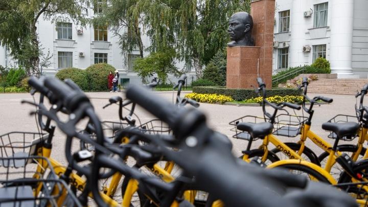 «Вопросы к администрации»: горожане ищут желтые велосипеды mobee по Волгограду