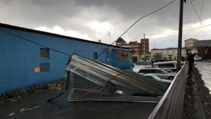Валит деревья и светофоры, срывает крыши: Новосибирск накрыла пыльная буря