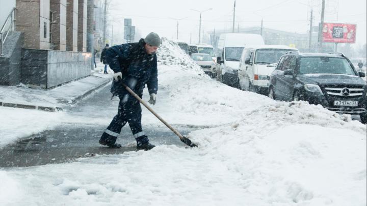 Компания, убирающая снег в Архангельске, проштрафилась на сотни тысяч рублей
