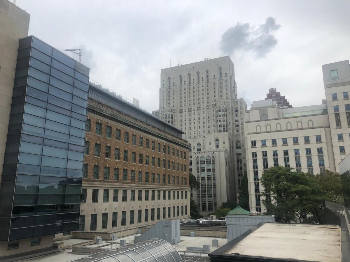 Здание Корнелла с террасы Рокфеллеровского университета