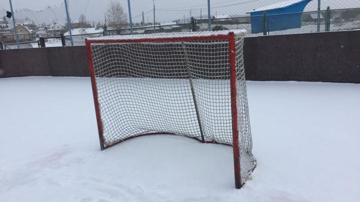В уральском поселке на 7-летнюю девочку упали хоккейные ворота