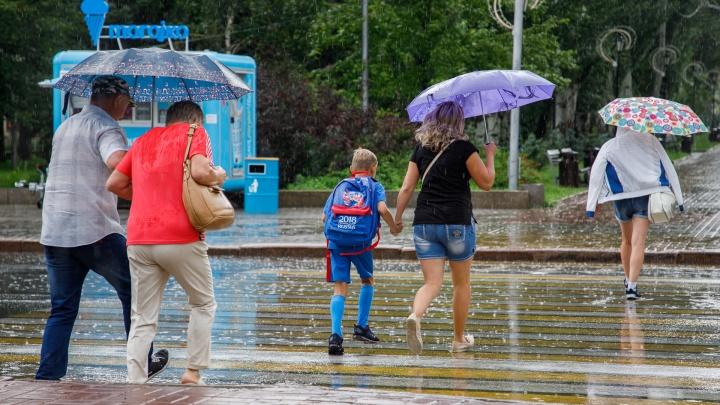 Дожди и порывистый ветер продолжат атаковать Волгоградскую область до среды