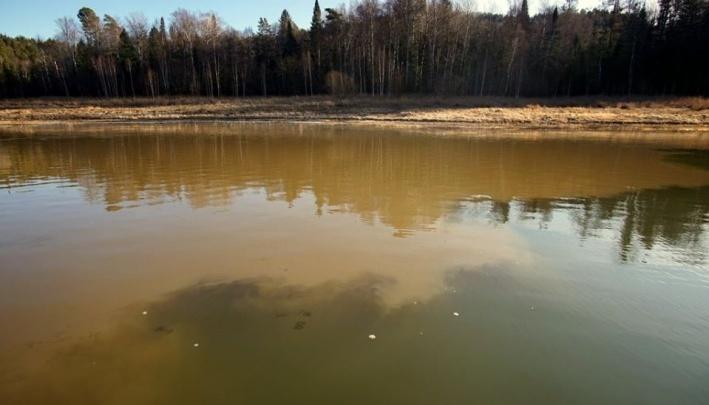 От владельцев золотого месторождения, где погибли люди, требуют оплатить ущерб природе в 350 миллионов