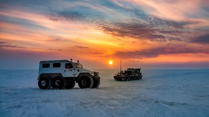 Новосибирский фотограф сделал впечатляющие снимки Крайнего Севера и оленей