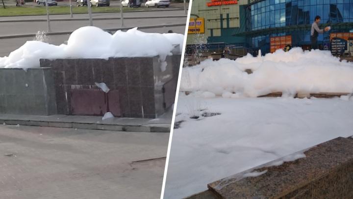 «Пенная вечеринка»: ярославцы вылили в фонтан несколько бутылок моющего средства