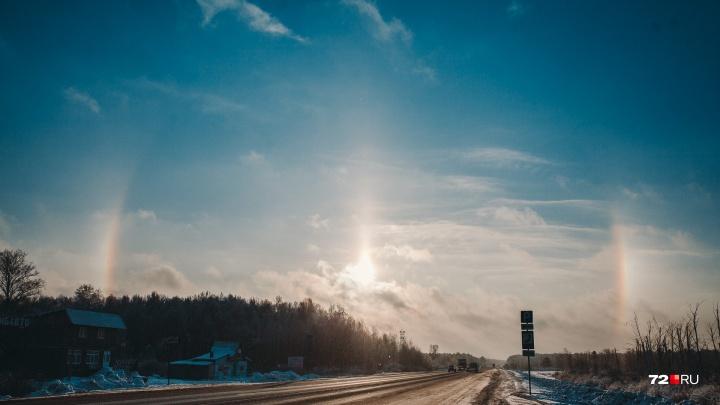 Холода наступают: погода в Тюмени на следующую неделю