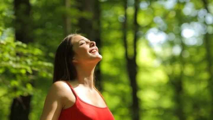 """Отдых для здоровья со скидкой 14%: база отдыха """"Незабудка"""" пригласила на оздоровительные программы"""