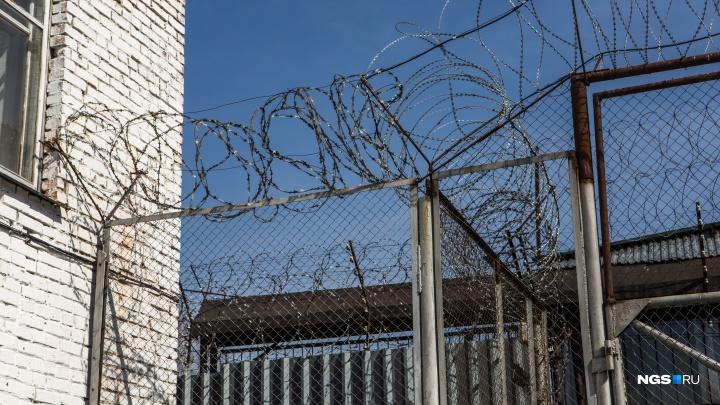 Что известно про массовую голодовку в новосибирской колонии — версии адвоката, силовиков иГУФСИН