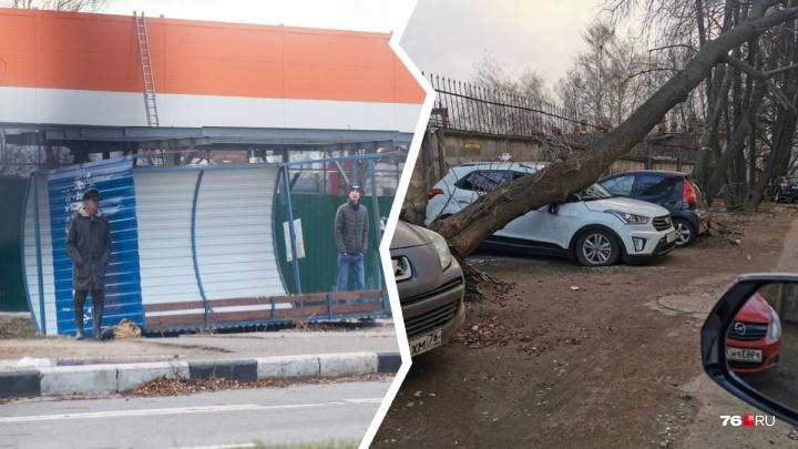 Ураган в Ярославле: хроника буйной ночи