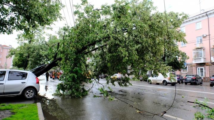 Поторопитесь вернуться домой: на Прикамье надвигается ураган