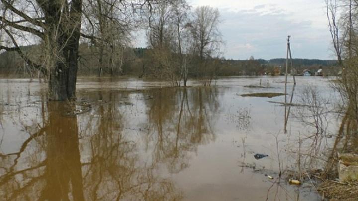 В Пермском районе из-за паводка подтопило пятьдесят придомовых территорий